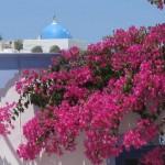 Greek Island Books Paul Dillon Interview