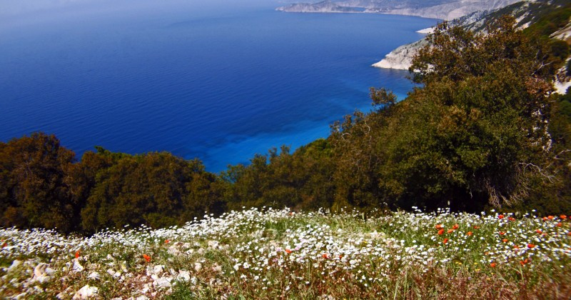Kefalonia's Magnificent Scenic Drive